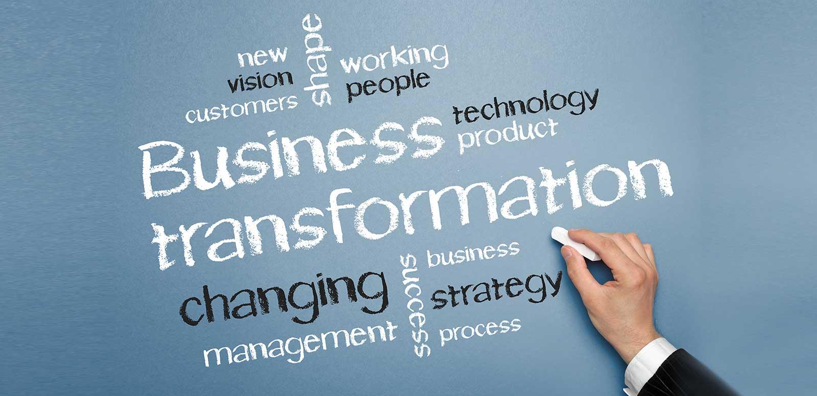 Leading Complex Change Programmes